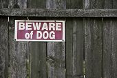 Постер, плакат: Beware Of Dog