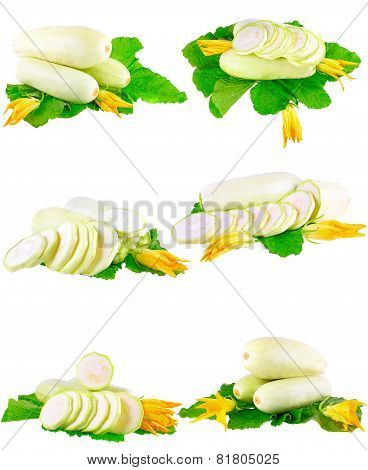 Vegetable Marrow With Green Foliage. Isolated