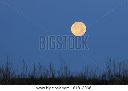 Red Moon On Blue Sky