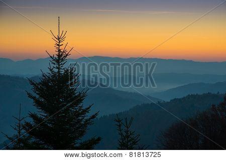 Sunset In Carpathian Mountains