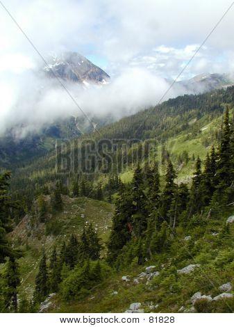 View From La Crosse Pass (portrait)