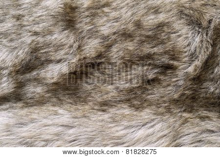 Abstract Texture Of Brown Fur Fabric