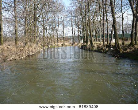 The river Úhlava in spring in Pilsen
