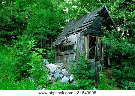 The old dilapidated shack