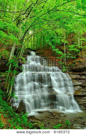 Spingtime Waterfall
