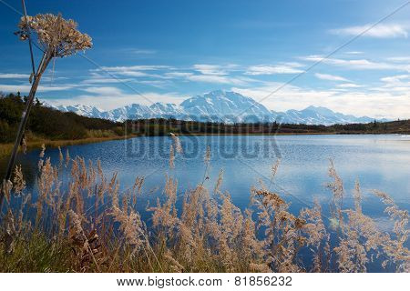 Mt. Mckinley (denali) On A Sunny Day From Reflection Pond