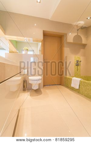 Luxury Bathroom In Large Residence