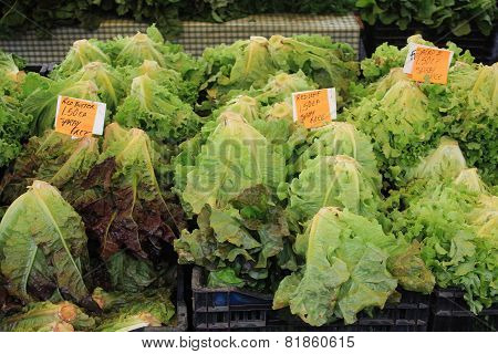 Heads Of Lettuce For Sale At A Farmers Market