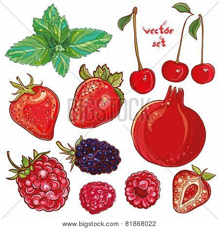 Vector Set With Small Fruits, Berries
