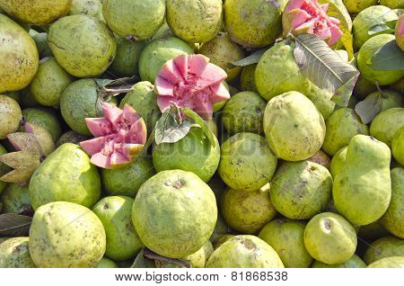 Fresh Guava Fruits Group In Street Market Delhi, India