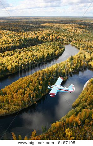 Airplane Over Forest