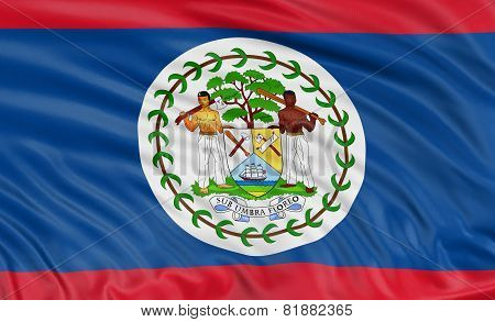 3D Belize flag