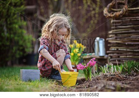 child girl planting flowers in spring garden