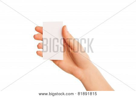 one hand holding a white piece of cardboard.