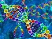 stock photo of genetic engineering  - Illustration of rainbow DNA  - JPG