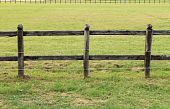 Horses wooden fence