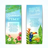 pic of bird paradise  - Tropical paradise summer time vertical banner set with exotic plants flowers and bird isolated vector illustration - JPG