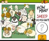 picture of counting sheep  - Cartoon Illustration of Education Counting Game for Preschool Children - JPG