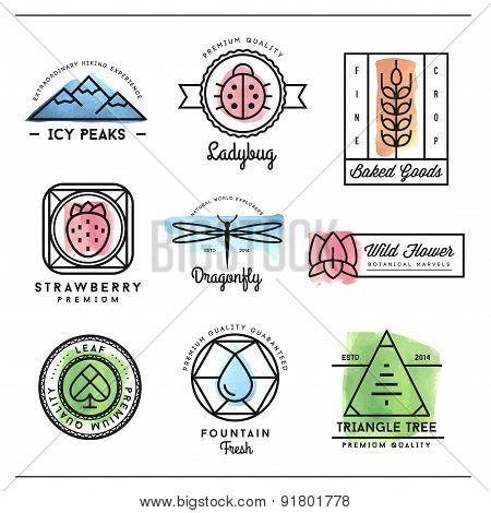 Set Of Beautiful Nature Inspired, Watercolor Geometric Logos And Badges
