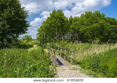 Footpath towards a railroad through nature in spring