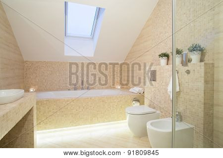 Bright Exclusive Bathroom