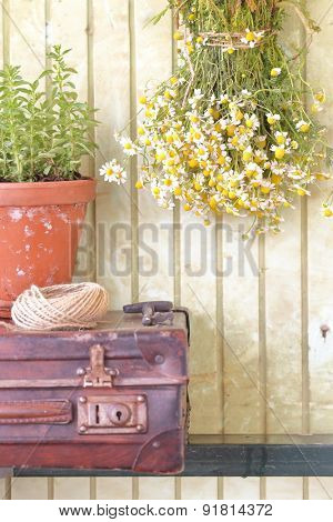 Still life with herbs and flowers retro background