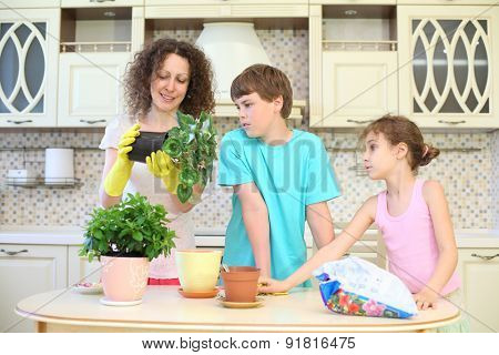 Boy and girl carefully watching mother transplants room flowers