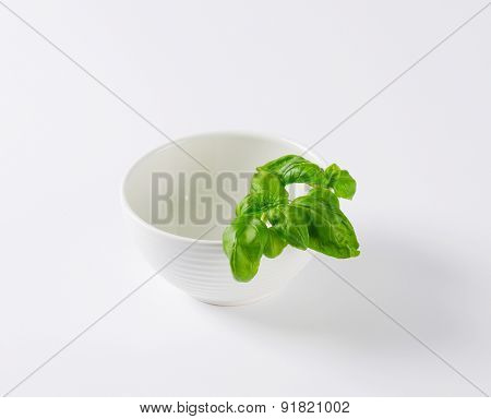 leaves of fresh basil on the side of bowl