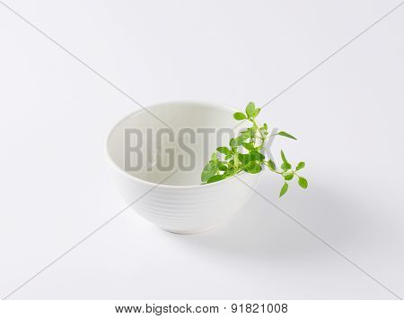 empty bowl with fresh herbs on the side