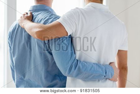 people, homosexuality, same-sex marriage, gay and love concept - close up of happy male gay couple or friends hugging from back