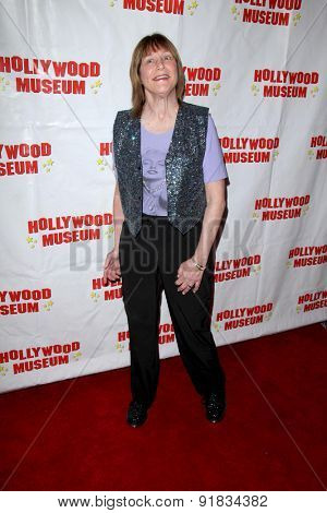 LOS ANGELES - MAY 27:  Geri Jewell at the Missing Marilyn Monroe Images Unveiled at the Hollywood Museum  on May 27, 2015 in Los Angeles, CA