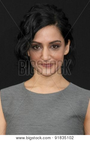 LOS ANGELES - MAY 26:  Archie Panjabi at the