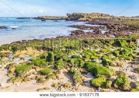 Beach in Oualidia, Atlantic coast of Morocco