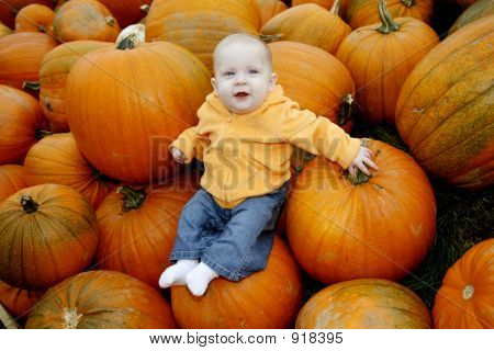 Tis The Season For Pumpkins