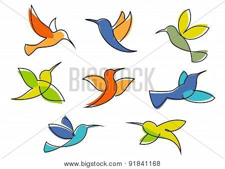 Colorful hummingbirds symbols or icons