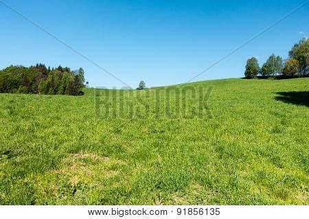 Spring Countryside With Meadow, Trees And Blue Sky