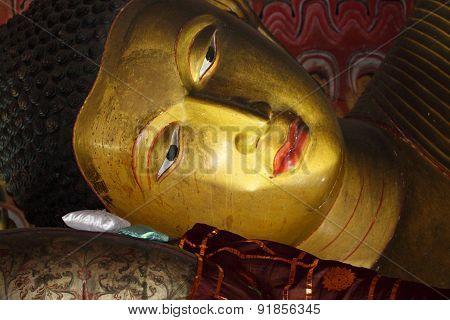 Buddha statue in Dambulla, Sri Lanka