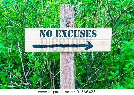 No Excuses Directional Sign