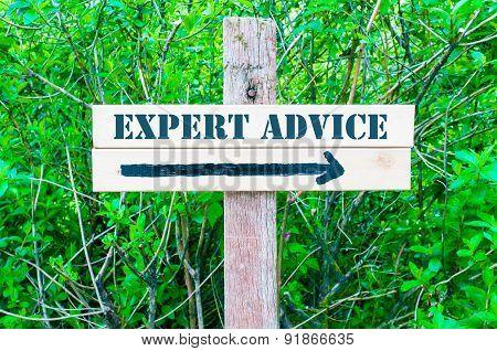 Expert Advice Directional Sign