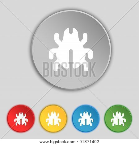Software Bug, Virus, Disinfection, Beetle Icon Sign. Symbol On Five Flat Buttons. Vector