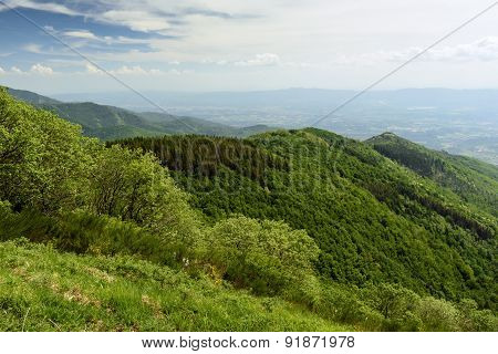 Landscape. Tuscany, Italy