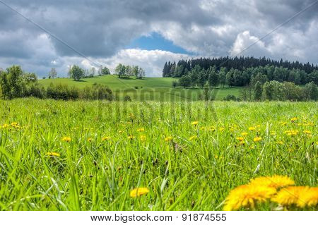 Blooming Spring Meadow Under The Sky With Clouds