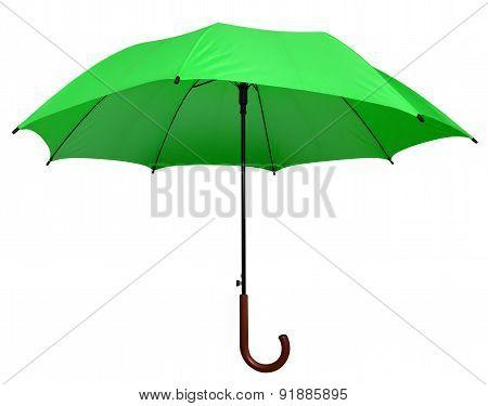 Umbrella - Green Isolated