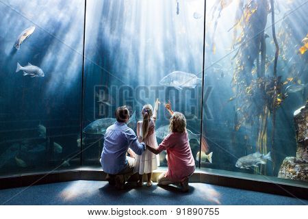 Wear view of family looking at fish tank at the aquarium