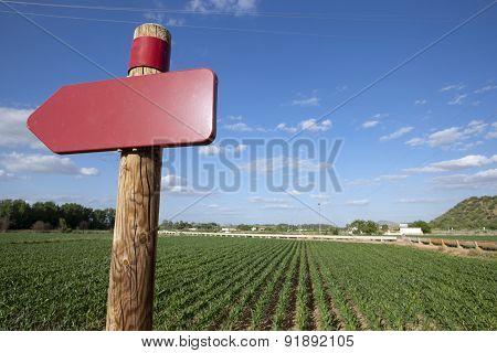 Signal On Agricultural Landscape