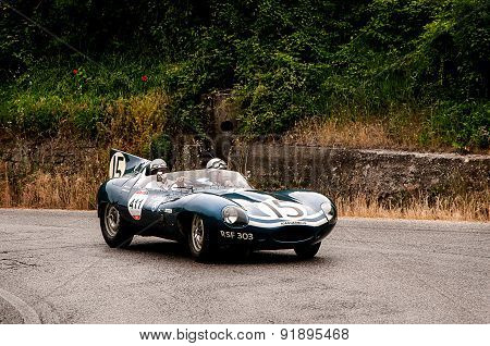 old car JAGUAR D Type  1956 mille miglia 2015