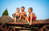 image of hay bale  - boys sitting on a hay bale on sky background - JPG