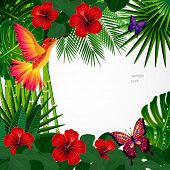 picture of tropical birds  - Tropical floral design background with bird - JPG
