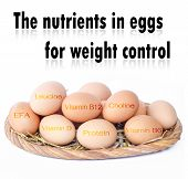 stock photo of b12  - The nutrients in eggs for weight control - JPG