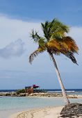 picture of beach hut  - France a Robinson hut on the beach of Sainte Anne in Guadeloupe - JPG